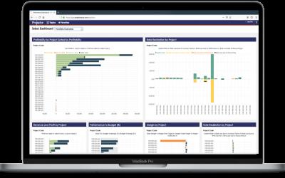 Levels of Embedding with BellaDati Platform